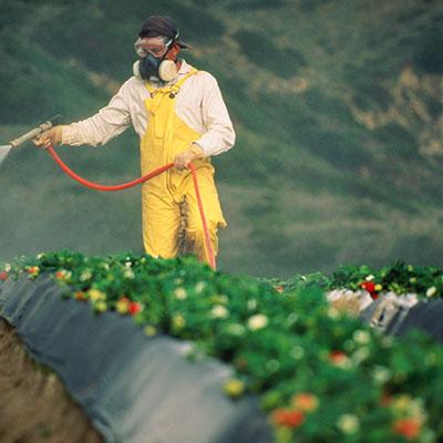 Определение пестицидов - группа дитиокарбаматов